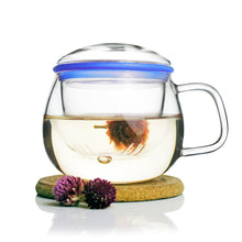 Load image into Gallery viewer, Glass Tea Mug with Infuser and Lid 300ml - Zeo