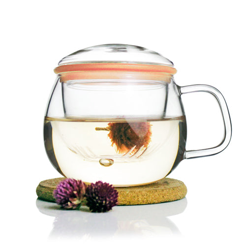 Glass Tea Mug with Infuser and Lid 300ml - Zeo