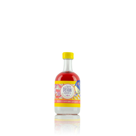 Raspberry & Elderflower Gin Liqueur 50ml