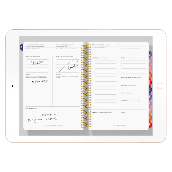 image relating to Digital Day Planner known as The Need Map Planner 2019 Interactive Planner (iPad) - Day by day Model