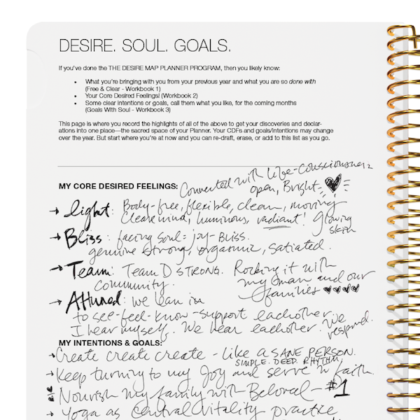 The Desire Map Planner 2019 Undated Edition (Charcoal)