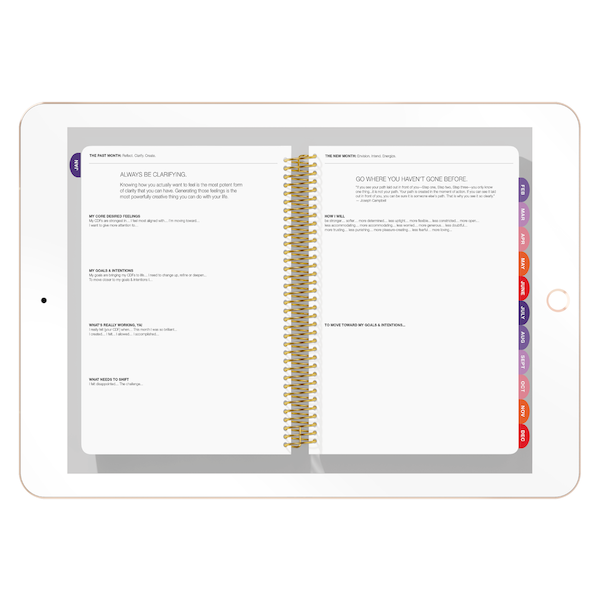The Desire Map Planner 2019 Interactive Digital (iPad) - Weekly Edition