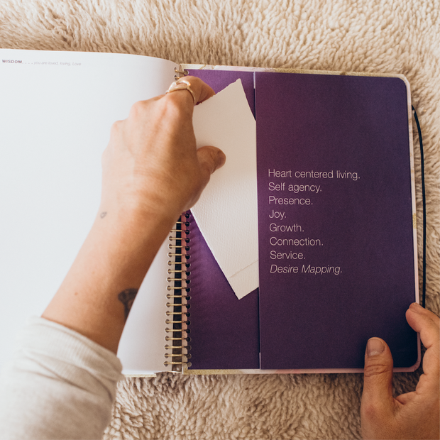 2020 DAILY Desire Map Planner + Program (Purple w/script)