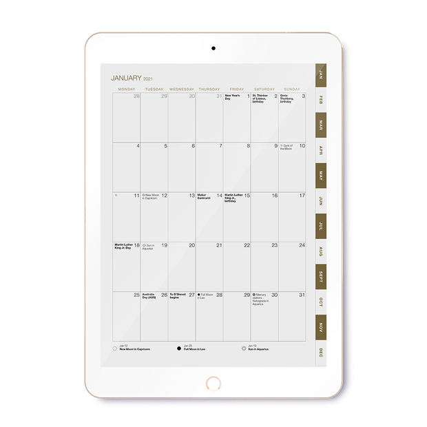 2021 Weekly Digital Desire Map Planner (Interactive/Ipad)