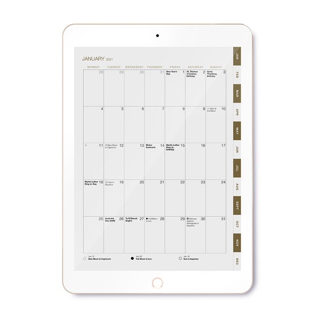 2021 Daily Digital Desire Map Planner (Interactive/Ipad)