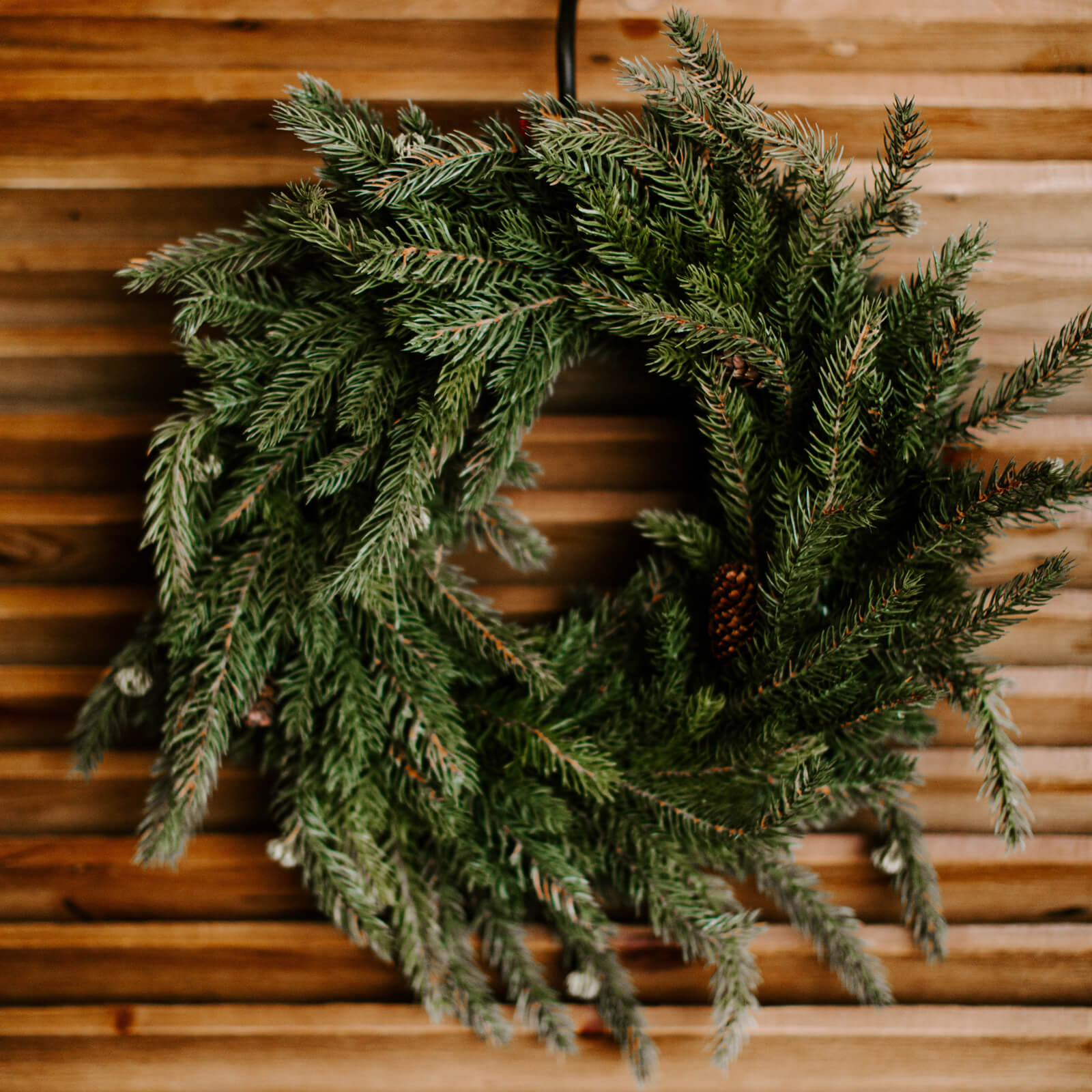 A grand and classic 17 inch faux Spruce wreath with real pinecones hung on a wooden door for winter decorating