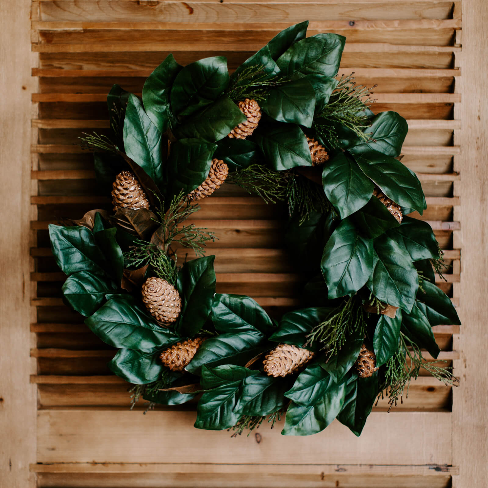 A unique mix of faux magnolia and cedar branches mine with real pinecones in the 24 inch magnolia wreath hung on a door.