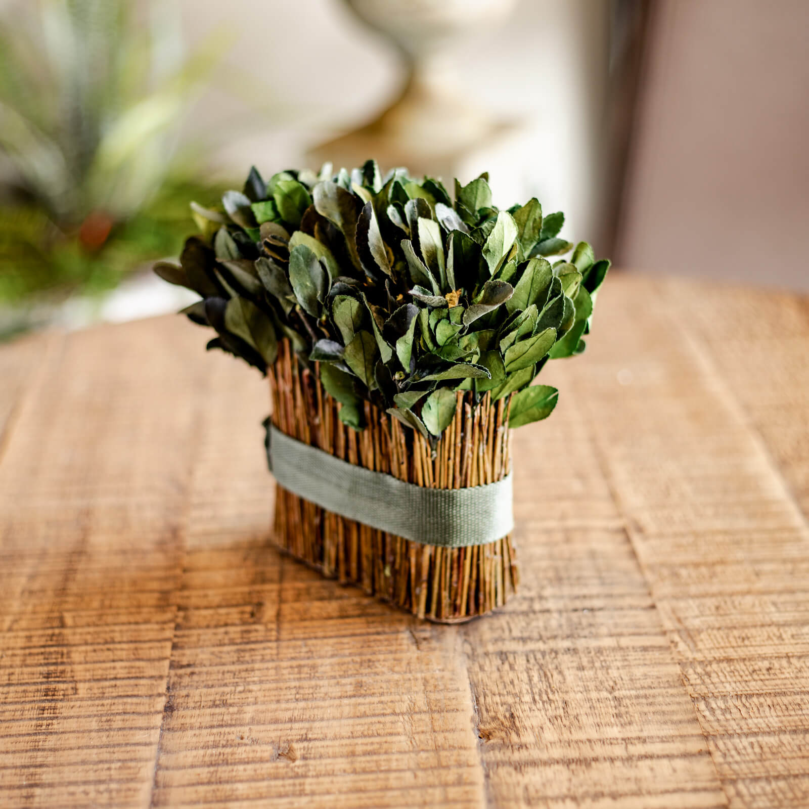 Natural Preserved Boxwood arrangement resting on an end table