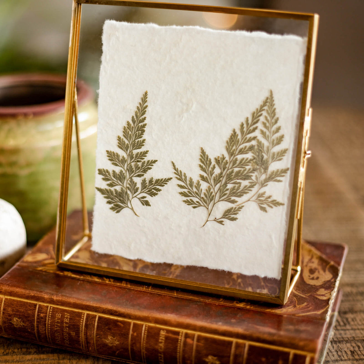 Leaf Fern Floating Frame