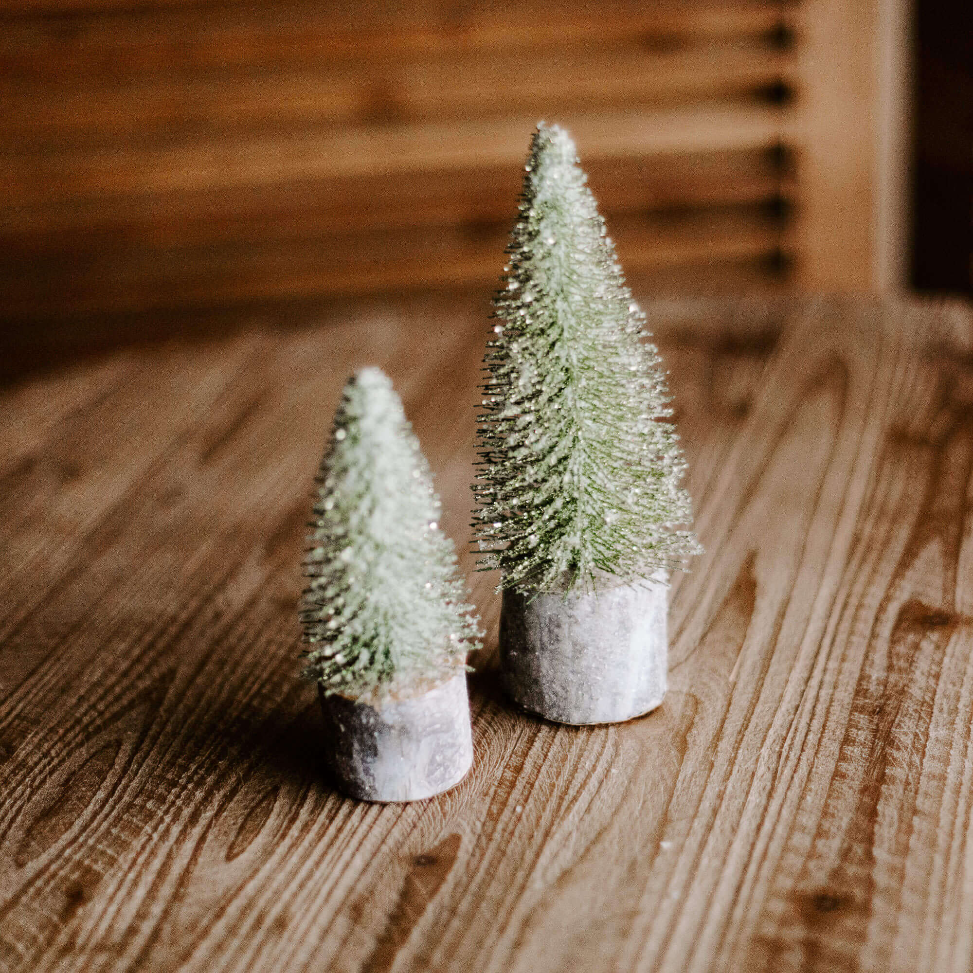 Small green foxtail trees with a silver metal base in 3 different sizes