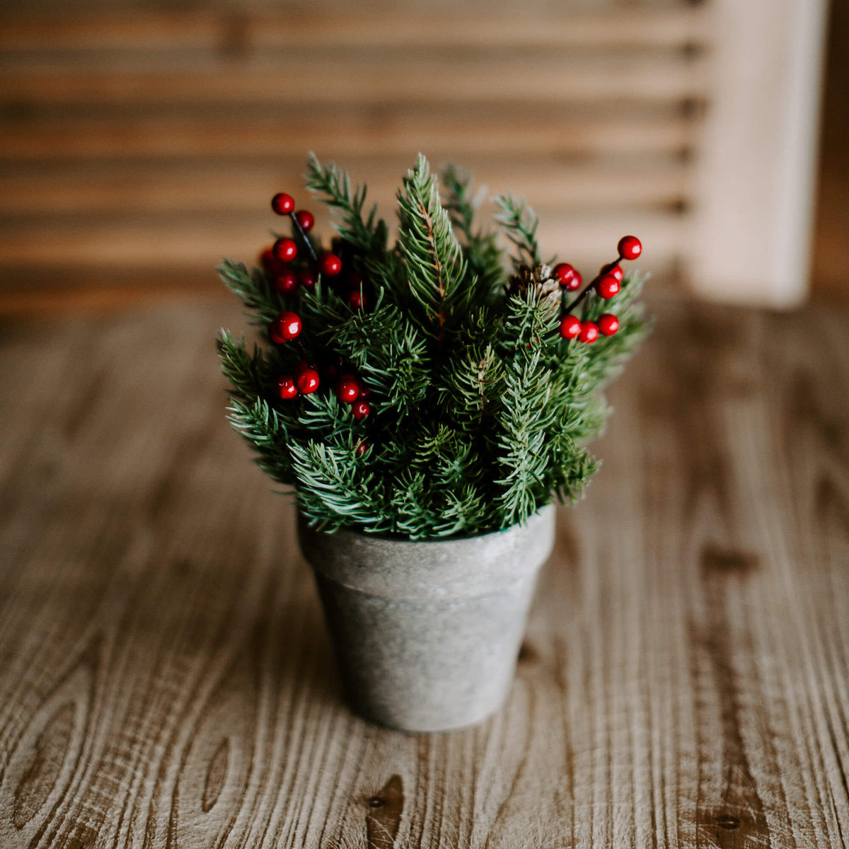 A 9 and half inch faux spruce sphere with tiny pinecones and red berry accents, inside a rustic gray pot for winter tabletop decorating