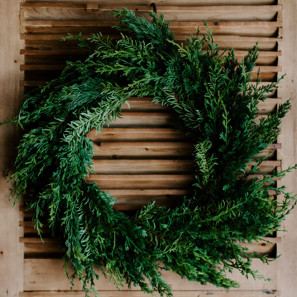 A natural-looking faux cedar wreath with wispy edges and realistic green branches make up this 28 inch diameter wreath for holiday decorating