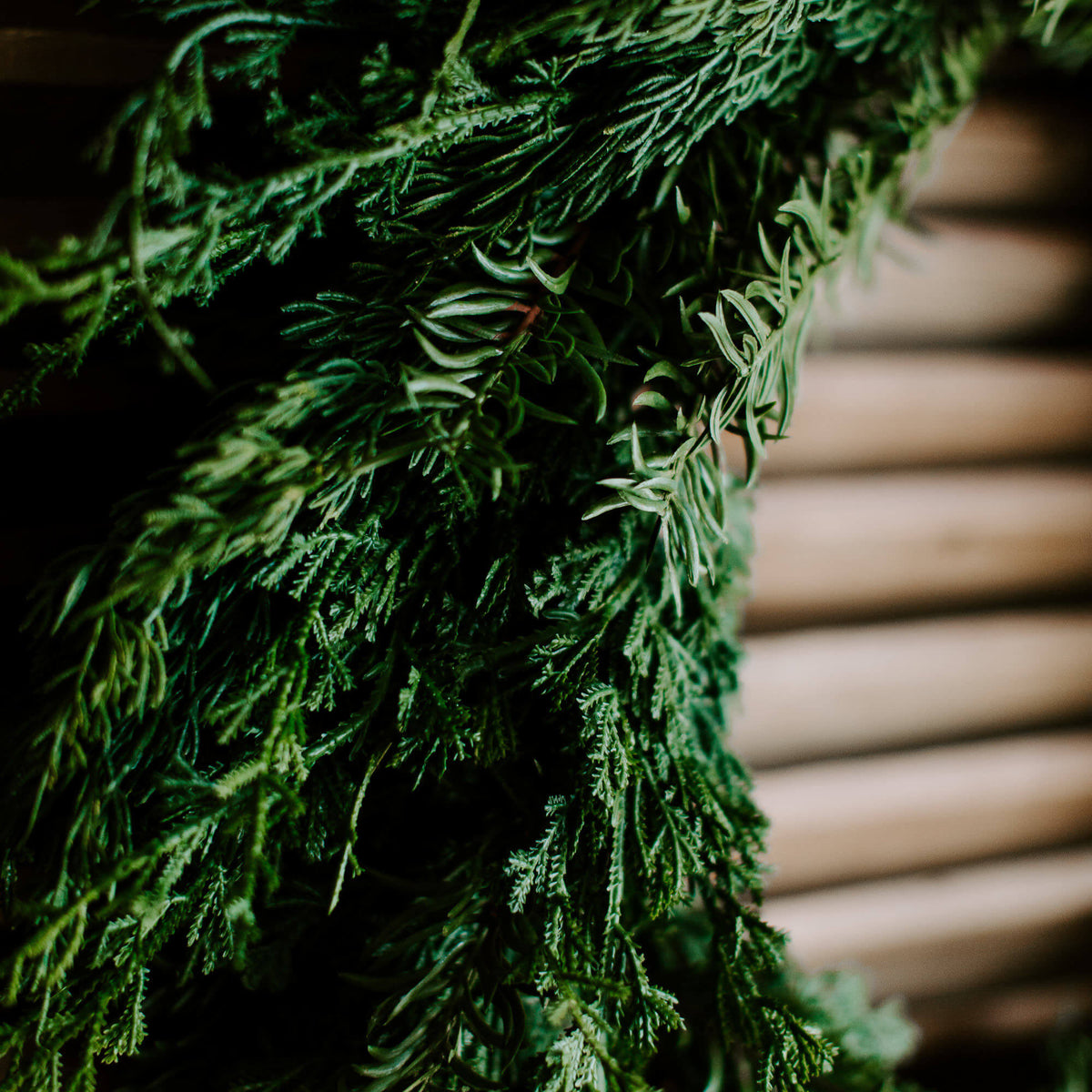 The closeup details of a natural-looking faux cedar wreath with wispy edges and realistic green branches make up this 28 inch diameter wreath for holiday decorating