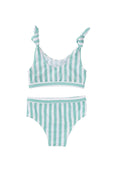 Estelle bikini- mint stripe