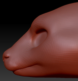 Feminine Kangaroo Head Base