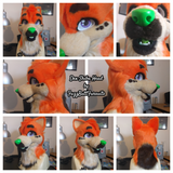 Custom Fursuit Heads
