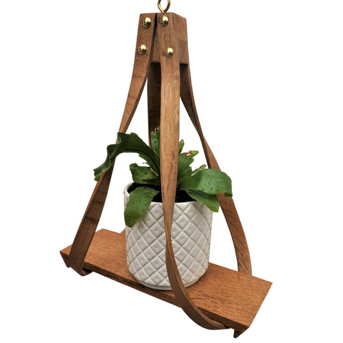 Two-arm Hanging Plant Holder