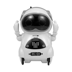 Pocket Talking Robot