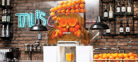 automatic citrus juicer - cafe type