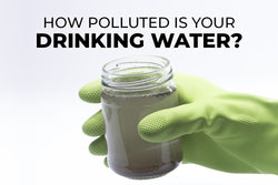 How Polluted is Your Drinking Water?