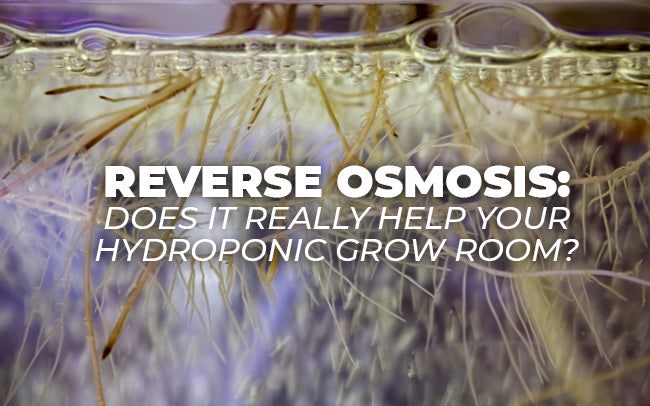 Reverse Osmosis: Does it Really Help Your Hydroponic Grow Room