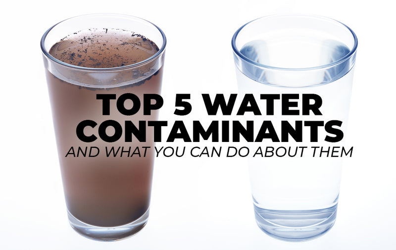 The Top 5 Water Contaminants and What You Can Do About Them