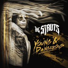 NEW - Struts (The), Young and Dangerous Gold LP