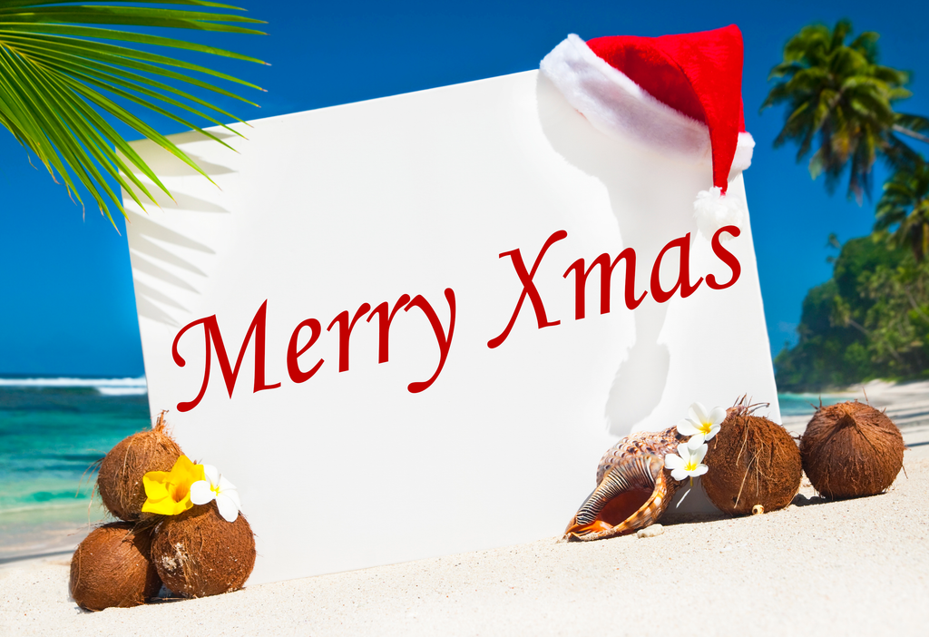 5 Tips To Celebrate A Summer Xmas