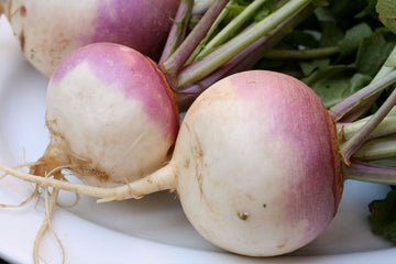 Large Turnip