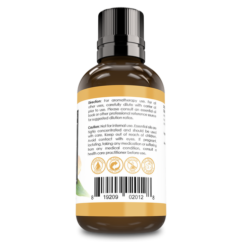 Amazing Aroma Ginger Essential Oil 2 Oz 60Ml - Amazing Nutrition