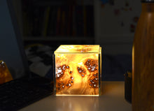 wood veneer glass light box