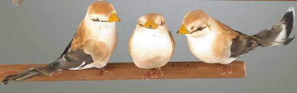 "4.3"" Brown Bird Decor (set of 3) SKU FB0001"