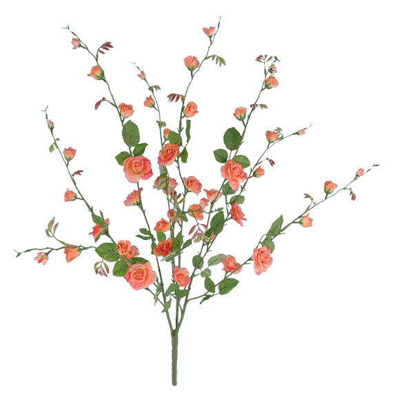 "27"" Trellis Rose Bush- Peach  SKU K-1156"