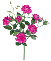 "15"" Baby Rose Bush-Beauty  SKU M-1111"