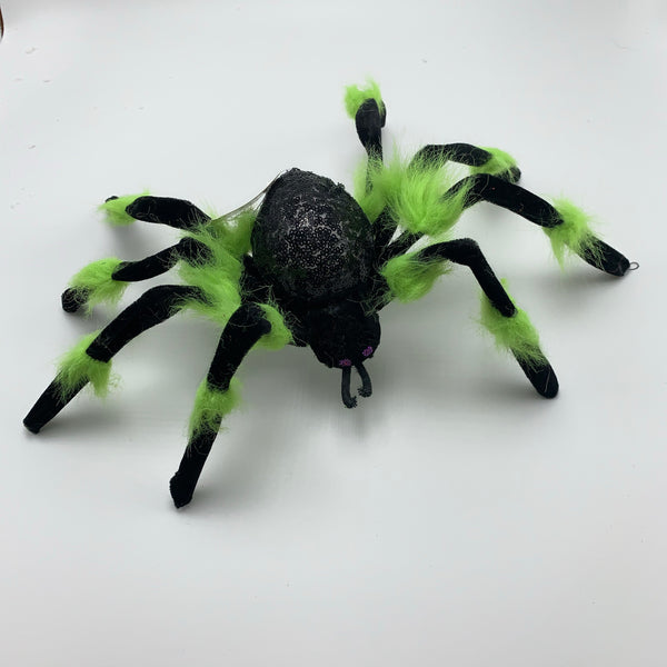 "6""  Spider Decor-Black/Green      SKU  H19196-2A"