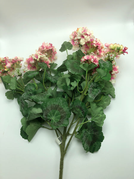 "24"" Geranium Bush-Pink/Cream SKU 2304/10PC"