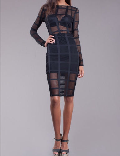 Sheer Knee Length Long Sleeve Dress
