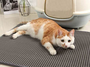 Anti-microbial Cat Liter Mat