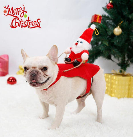 Santa Riding Sleigh | Christmas Pet Dress | All For Xmas