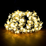 Warm White Flower Blossom Solar String Lights Waterproof | Christmas Lighting | All For Xmas