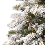 7.5' Flocked South Carolina Spruce Artificial Christmas Tree