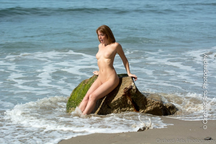 ebook: Danielle at the Beach