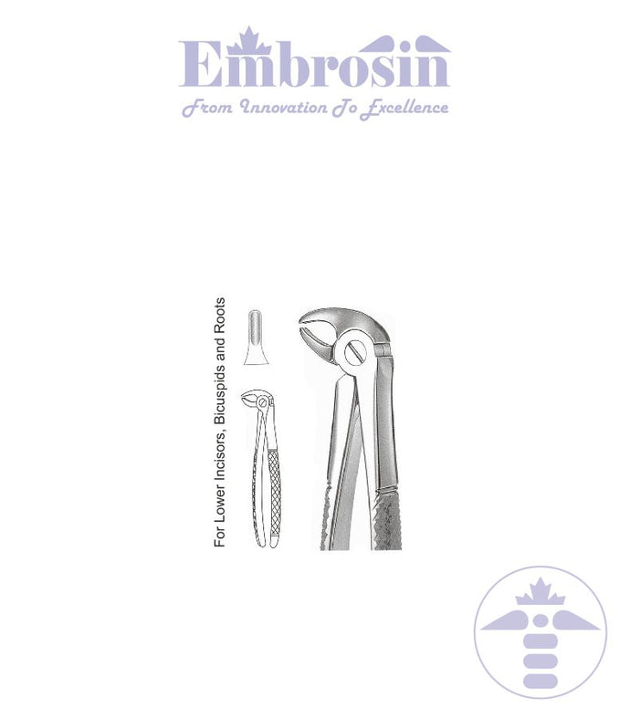 GE08-027 - Extracting Forceps (English Patterns), Mead, No. MD3, Lower Incisors, and Roots