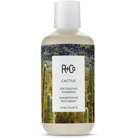 r+co - cactus shampoo[product_type ]r+co - Kiss and Makeup
