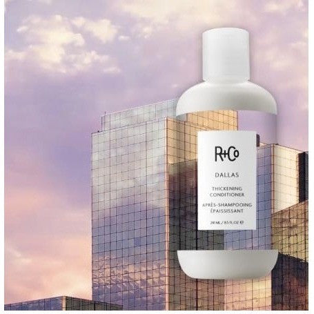 r+co - dallas thickening conditioner