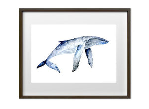 Set of Two Whale prints - A4 or A3