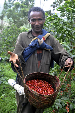 coffee farmer Africa