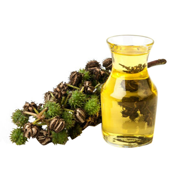 Castor Oil Castor Oil is commonly used in the production of soap, lotions, balms and creams. Wholesale soap making supplies based in British Columbia, Canada.