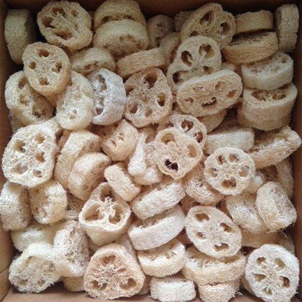 Loofah Rounds 1 inch