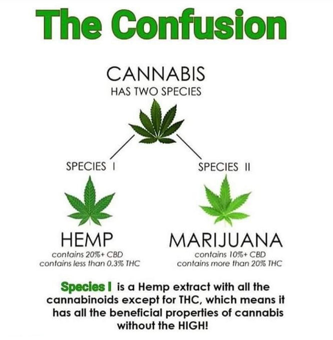 Learn the difference between CBD from Hemp vs Marijuana .. whats the difference ?